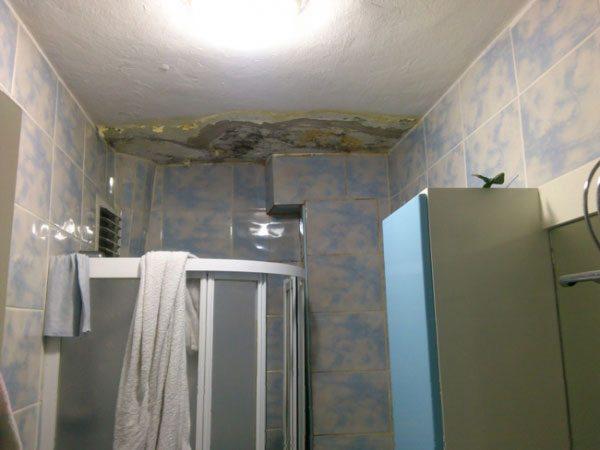 banyo tavanında küf oluşmasını önleyen firma